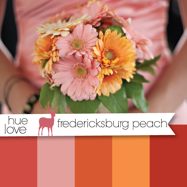 pink orange and peach gerber daisey bouquet